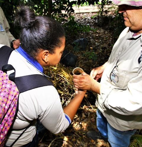 Secretaria de Saúde auxilia municípios no combate a dengue em Mato Grosso do Sul